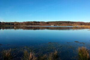 Kärramosse Våtmark