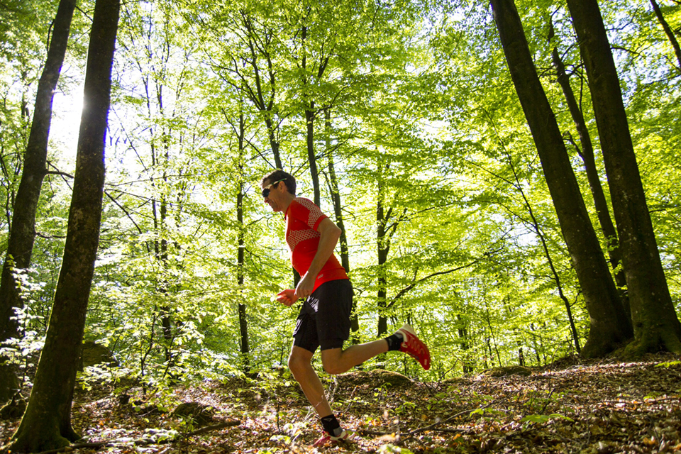 You are currently viewing Bocksten TrailRun